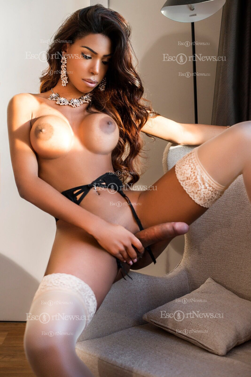 Transexual Escorts Washington Dc Craigslist