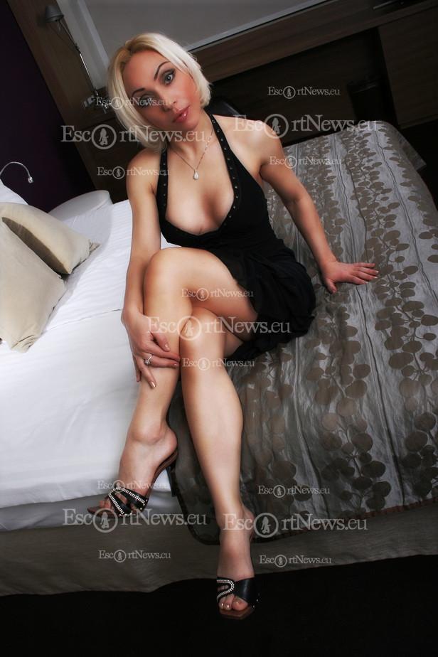 Big tits big cock shemle